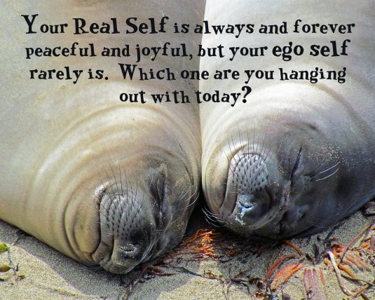 An inspirational question about our Real Self and our ego self.