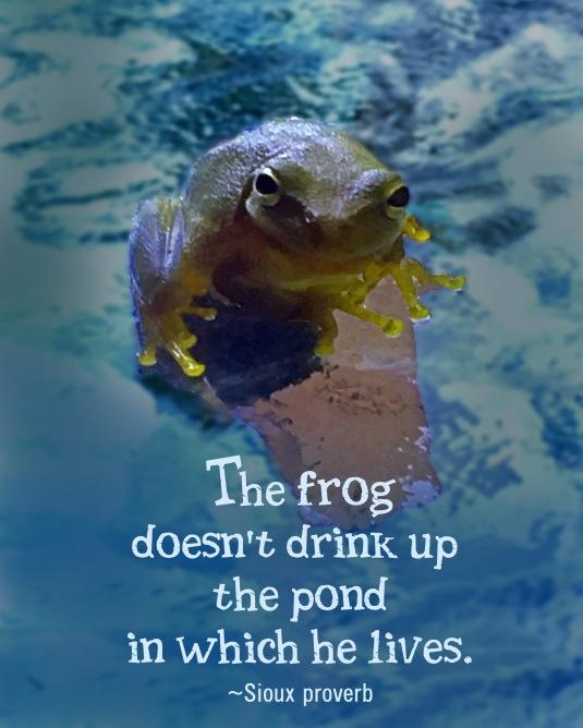 A Sious proverb