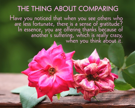Some thoughts about the negative consequences of comparing yourself to others.