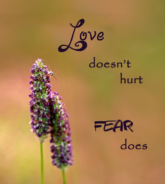 An inspirational quote about love and fear.