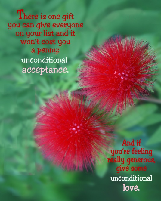 A holiday quote about giving the gift of unconditional acceptance and love.