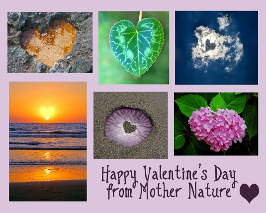 Heart-shaped nature photos.