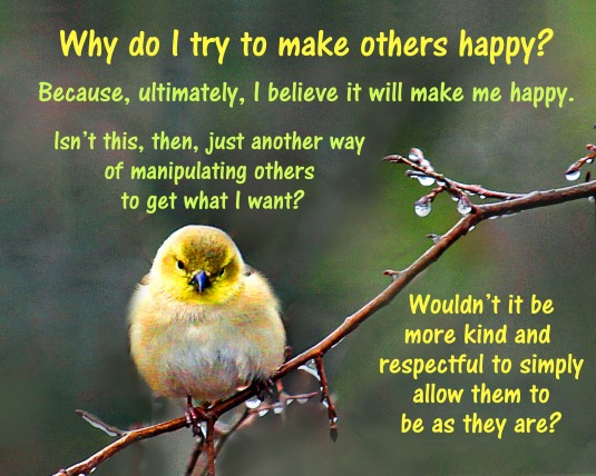 Question to ask yourself about why we try to make others happy.