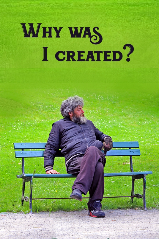 Consciousness question: Why was I created?