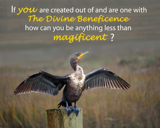 An inspirational quote about our oneness with our Source and are natural magnificence.