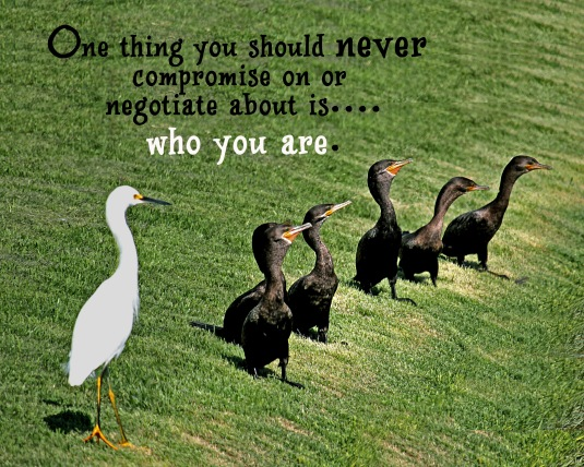 An inspirational quote about not compromising who you are.
