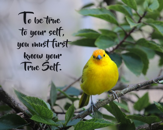 An inspirational quote about being true to your True Self.