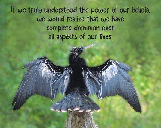 An inspirational quote about the power of belief.