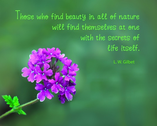 An inspirational quote about nature and oneness.