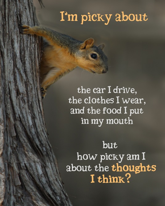 How picky are you about the thoughts you think?
