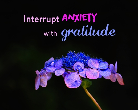 An inspirational quote: interrupt anxiety with gratitude.