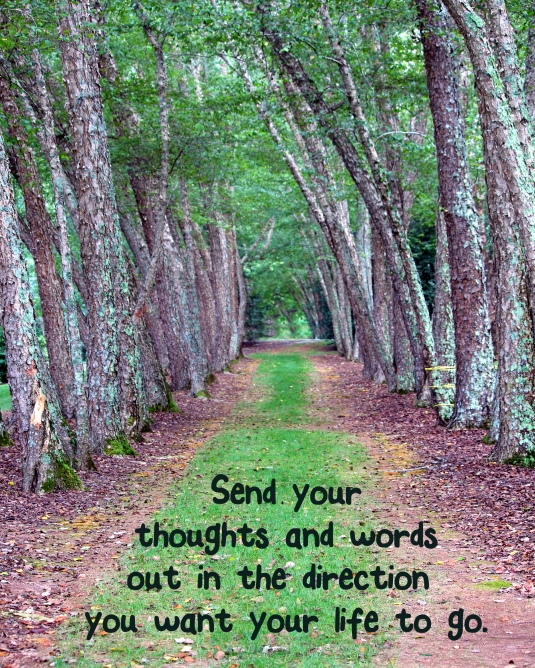 Inspirational quote: send yourthoughts and words out in the direction you want your life to go.