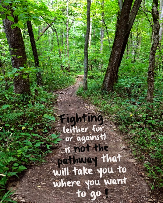 Fighting, either for or against, is not the pathway to peace or well being.