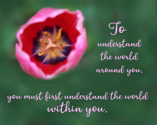 Inspirational quote about understanding the world.