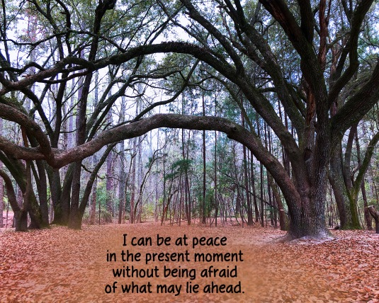 Affirmation about being at peace in the present moment.
