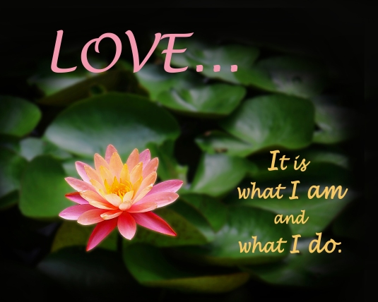 Affirmation: Love....it is what I am and what I do.
