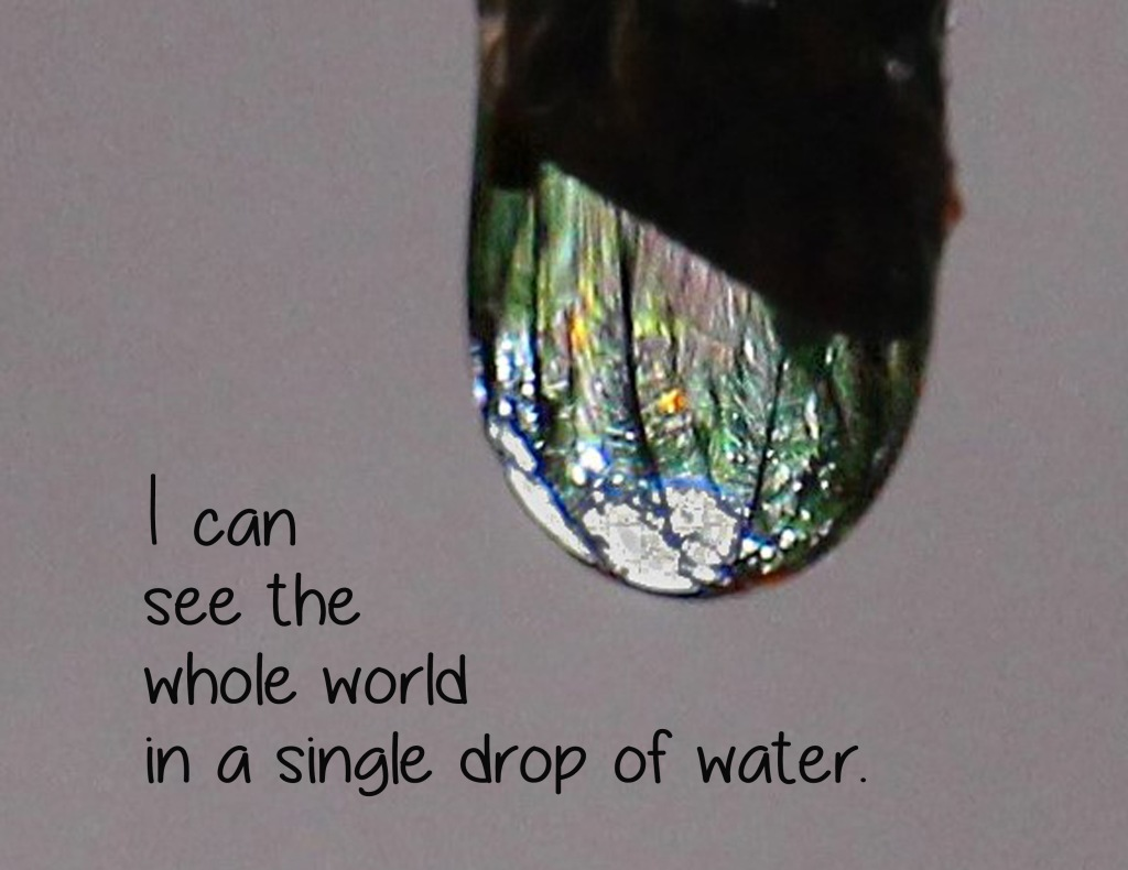 Inspirational quote about seeing the whole world in a single drop of water.