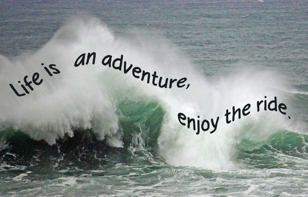 Life quote:  Life is an adventure, enjoy the ride.